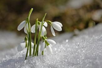 Cat de schimbatoare va fi vremea in martie. Temperaturile vor oscila intre 16 si -5 grade Celsius