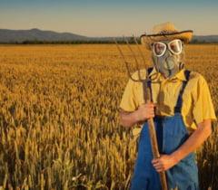 Cat rau fac pesticidele corpului tau