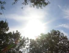 Cat trebuie sa stam la soare pe zi pentru a sintetiza suficienta vitamina D