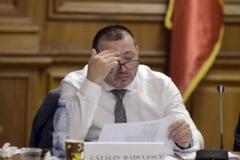 """Catalin Radulescu vrea neaparat amnistie si gratiere: Intrebati """"badalaii"""" si pe Toader de ce amanam"""