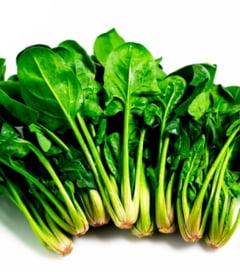 Cate calorii si ce nutrienti are spanacul