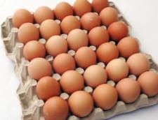 Cate oua consuma un roman pe luna