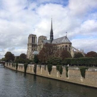 Catedrala Notre-Dame, in pericol iminent. Francezii cauta filantropi americani sa o restaureze