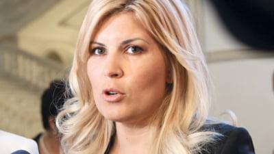 Cati bani a obtinut Udrea din vanzarea unor bunuri de la plecarea din Minister