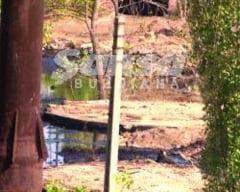 Cauza incidentului de la Rimnicu Sarat, inca un mister