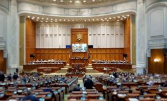 Cazul de la Caracal: Ministrul de Interne si directorul STS, chemati la audieri in Parlament