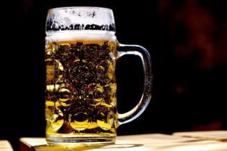 Ce-a fost intai, berea sau agricultura? Ar trebui sa multumim stramosilor iubitori de bere pentru faptul ca avem o agricultura azi. Descoperire de proportii, care rastoarna lucrurile