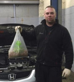 Ce a putut sa faca o veverita la motorul unei masini: Nu am vazut niciodata asa ceva (Foto)