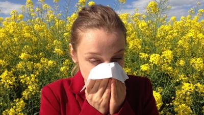 """Ce alergii ne """"pândesc"""" vara. Polenul, poluarea și insectele ne dau bătăi de cap"""