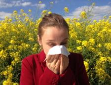 """Ce alergii ne """"pandesc"""" vara. Polenul, poluarea si insectele ne dau batai de cap"""