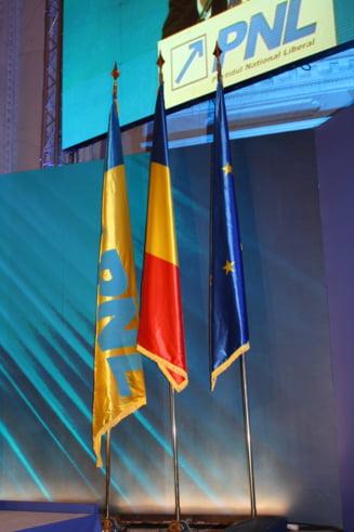Ce averi au candidatii PNL la europarlamentare: Manescu nu are economii, Busoi e cel mai bogat