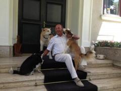 Ce casa vrea sa-i dea Guvernul lui Traian Basescu - surse