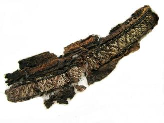 Ce cauta Allah intr-un mormant al vikingilor? Descoperirea care poate rescrie istoria civilizatiilor