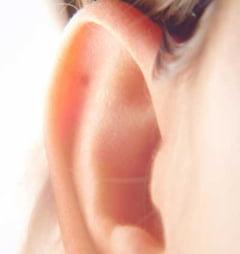 Ce e bine sa stii despre infectia urechii