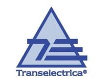 Ce face foamea de bani a Guvernului Tudose: Transelectrica da dividendele la stat si se imprumuta ca sa faca investitii