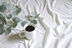 Ce lenjerii de pat sa alegi pentru zilele calduroase de vara?