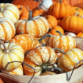 Ce mancam in octombrie, de sezon si sanatos, sa ne pregateasca pentru iarna