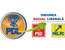 """Ce se intampla cu PDL? Analistii: Basescu si MRU, printre """"vinovati"""""""