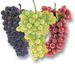Ce trebuie sa stii despre struguri, must si vinuri medicinale