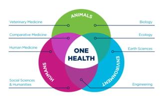 Cea de-a doua Conferinta Europeana One Health