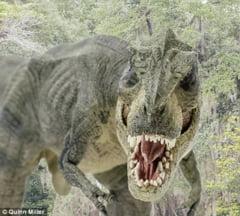 Cea mai infricosatoare poza de nunta: un dinozaur, printre invitati