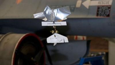 """Cea mai mica """"insecta-drona"""" din lume (Video)"""