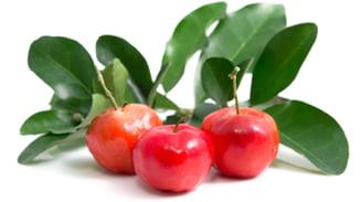 Cel mai puternic antioxidant - Vitamina C din fructul de Acerola