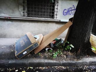 """Cele mai murdare zone din Sectorul 2 al Capitalei. """"Locuri în care mojicia şi nesimţirea transformă oraşul în groapă de gunoi"""""""