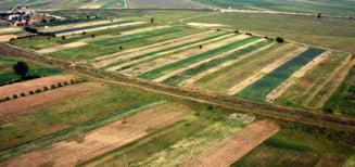Cele mai scumpe terenuri din Romania - Sibiul este in top