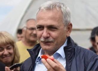 Cererea de eliberare conditionata a lui Liviu Dragnea, discutata miercuri de Tribunalul Bucuresti