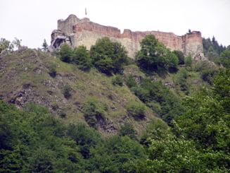 Cetatea lui Vlad Tepes a fost inchisa publicului, din cauza ursilor care dau tarcoale