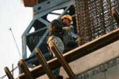 Cetateni moldoveni prinsi muncind ilegal in Salaj