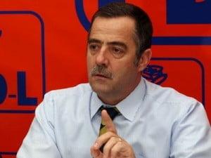 Cezar Preda: Daca Blaga castiga sefia PD-L, candidez pentru secretar general