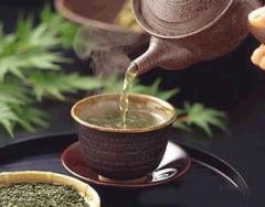 China va avea din 2012 un Colegiu in care se va studia ceaiul
