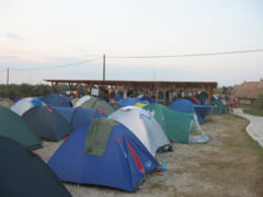 Cinci campinguri deschise in Delta Dunarii