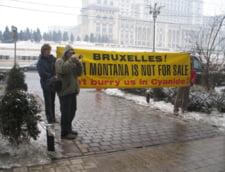 Cinci europarlamentari ii cer lui Ungureanu blocarea proiectului Rosia Montana