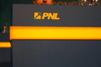 Cinci liberali se lupta pentru a fi candidatul PNL la Primaria Capitalei - Petre Roman, printre ei