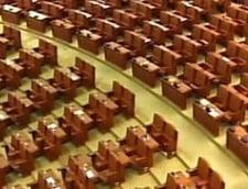 Cine a ratat intrarea in Parlament: Ioan Ghise, Cristiana Anghel, Cristina Pocora si Anca Boagiu, printre disparuti