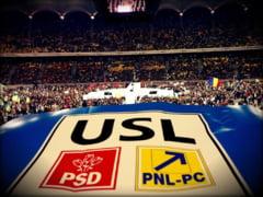 Cine decide in PSD viitorul USL (Opinii)