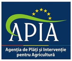 Cine este noul sef al APIA