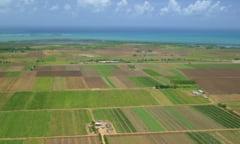 Cine exploateaza cele mai scumpe terenuri arabile ale statului