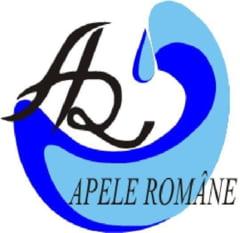 Cine ii ia locul sefului de la Apele Romane