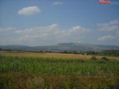 Cine si cat teren agricol poate cumpara: Cei care nu sunt din UE trebuie sa obtina cetatenia romana