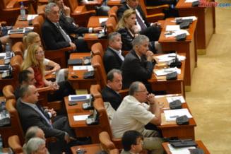 """Cine sunt senatorii care nu au luat niciodata cuvantul in plen in 2015. Printre """"vorbareti"""", Cristiana Anghel"""