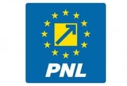 Cine va conduce PNL dupa demisia lui Blaga? Doua nume vehiculate