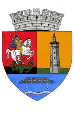 Cine va face parte din Consiliul municipal si din Consiliul judetean in urmatorii patru ani
