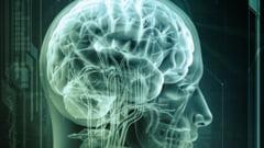Cipuri electronice care imita functionarea creierului uman