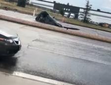 Clipul zilei: Momentul socant in care o masina dispare in asfalt
