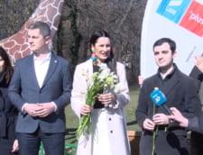 Clotilde Armand si-a anuntat candidatura la Primaria Sectorului 1: PNL sa faca un pas in spate, a fost mereu impreuna cu PSD