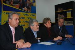 Coalitia neputintei, PNL-PSD-PRM-PC (Opinii)